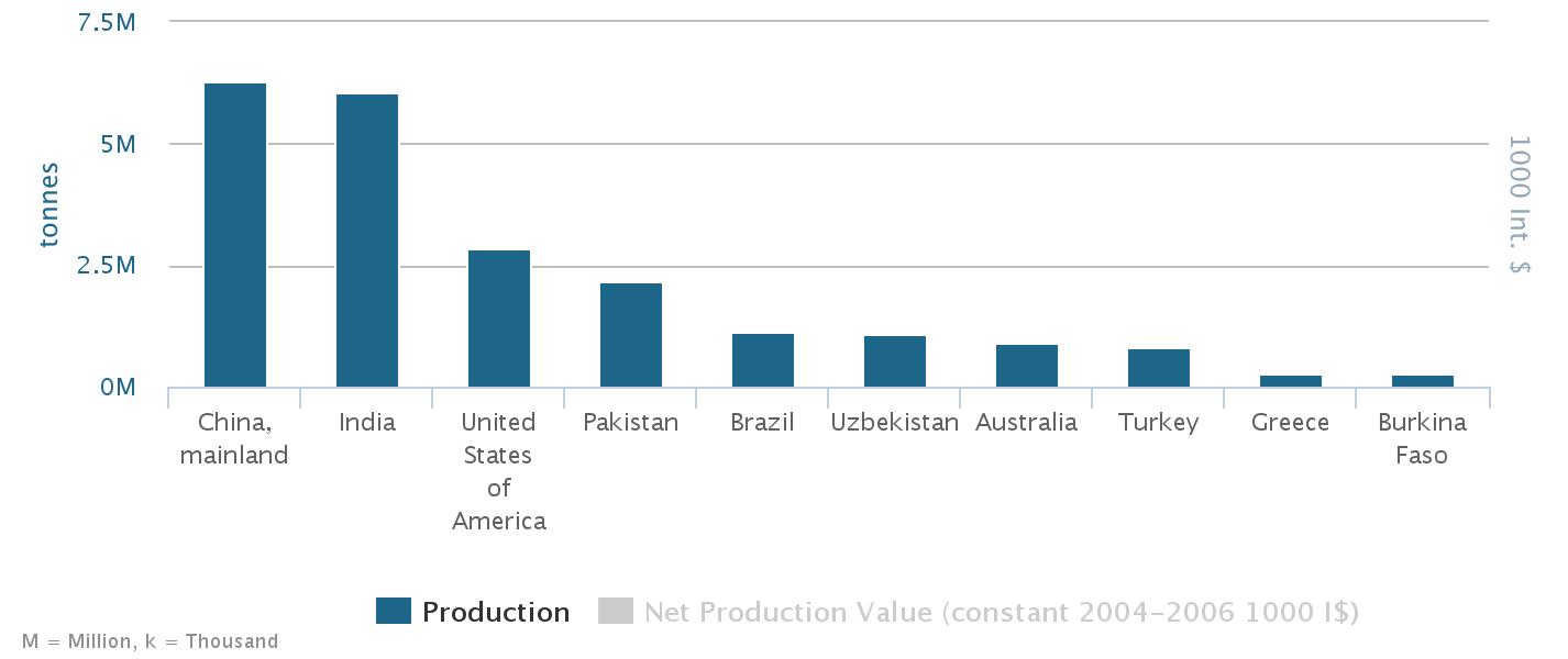 Die 10 größten Herstellerländer von Baumwolle
